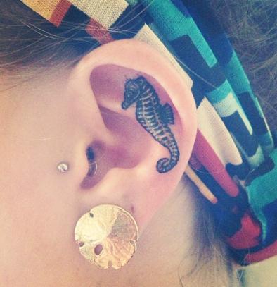 tatuagem leão marinho