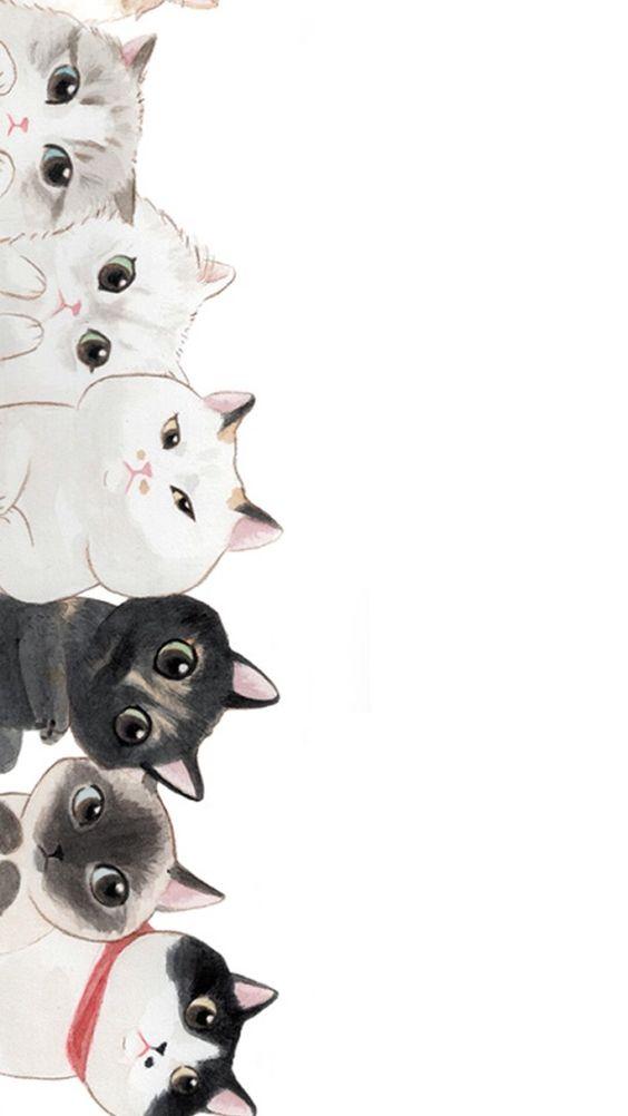 wallpaper celular gatos