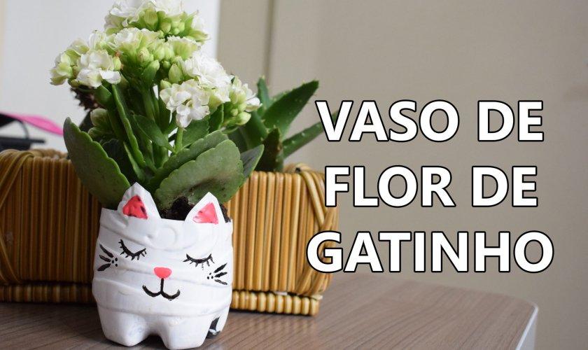 vaso de flor de gato