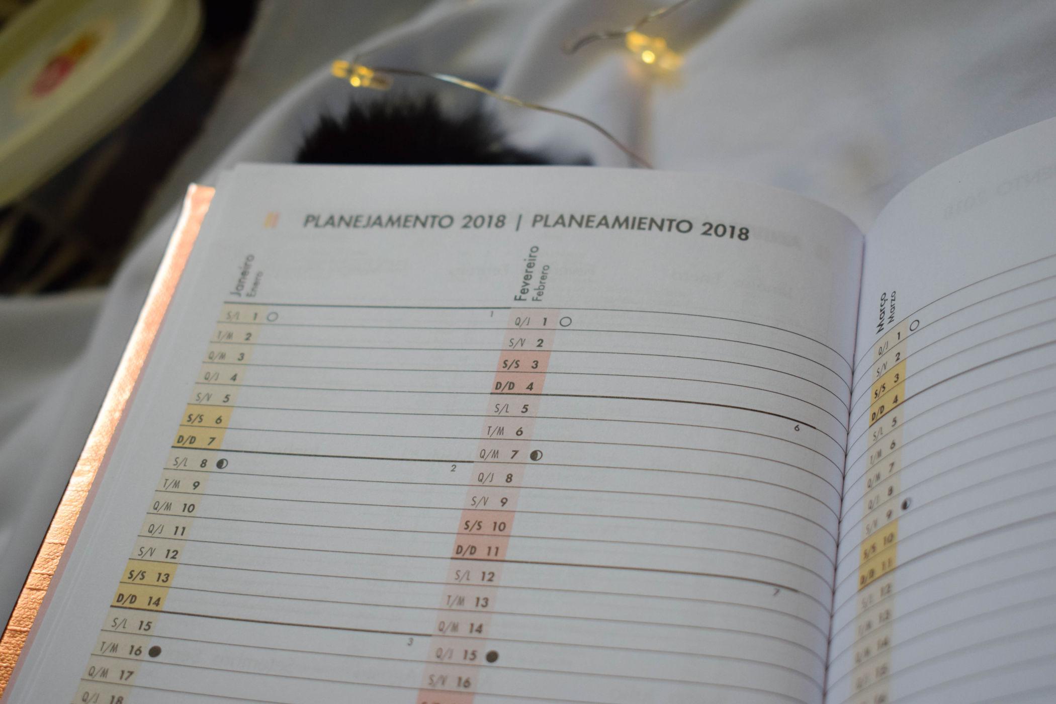 planner metalizado mensal